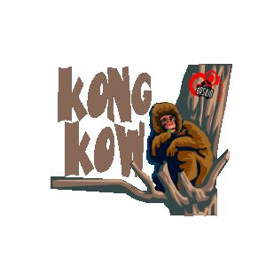 Avatar Kong Kow
